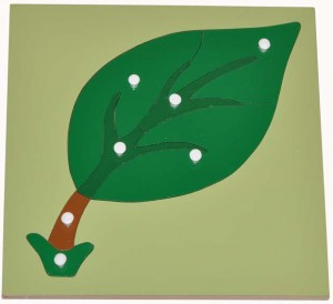 montessori_australia_wooden_leaf_puzzle