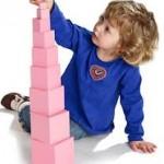 Những hoạt động trong Montessori nhằm luyện 5 giác quan cho trẻ giai đoạn 2-3 tuổi
