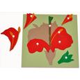 Giáo cụ Montessori FLOWER PUZZLE & Hướng dẫn sử dụng
